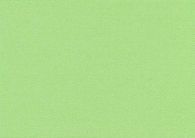 АЛЬФА 5713 фисташковый 200cm