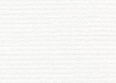 ОМЕГА 0225 белый 300 см