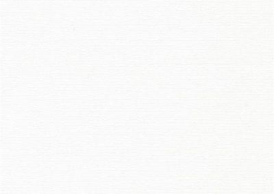 ОМЕГА FR BLACK-OUT 0225 белый, 250 см